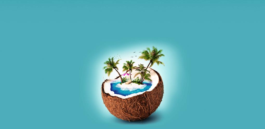 coconut island lombok